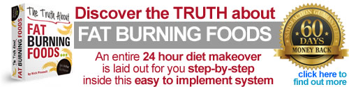 Download Truth about Fat Burning Foods by Nick Pineault