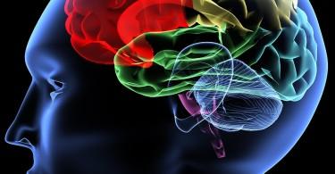 Mind Secrets Exposed Audiobook 2.0