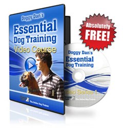 Doggy Dan Online Dog Training on Customer Tipster