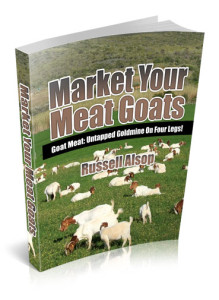 Instant Access to Market Your Meat Goats eBook from Customer Tipster