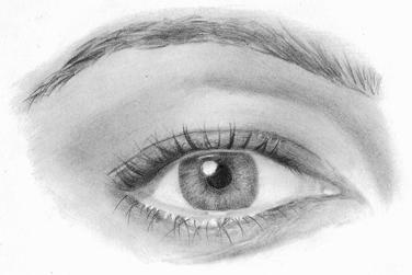 Realistic Pencil Portrait Mastery eBook