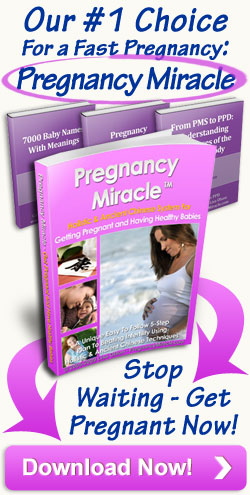 Click Here to Download Miracle Pregnancy Book by Lisa Olsen