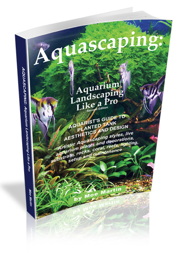Aquascaping – Aquarium Landscaping Like A Pro: Does this really work?