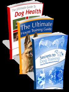 Download Kingdom of Pets eBook by Daniel Stevens