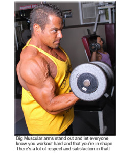 download blast your biceps programme review now